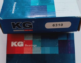 Bạc đạn KG 6310