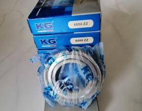 Bạc đạn KG  6006 ZZ